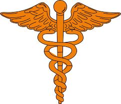 Kankakee Area Career Center - Medical Terminology / Basic
